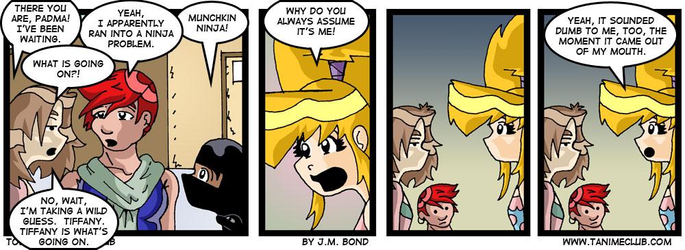 strip09_247_ninjaproblem